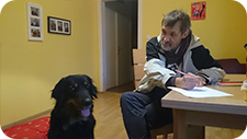 Tiergestütze-Therapie